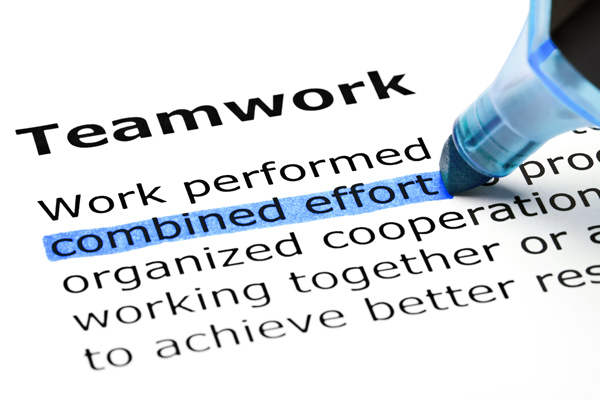 Highlighting The Importance of Teamwork