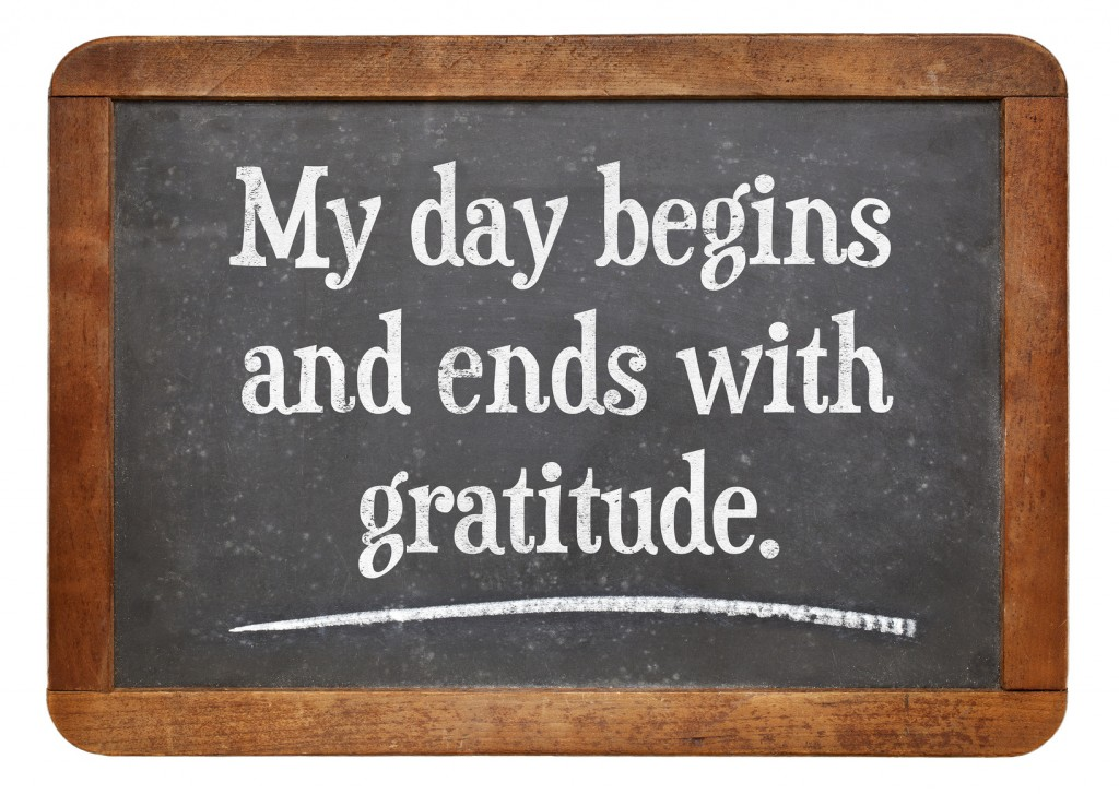Gratitude is an Attitude. Thankfulness, Gratitude, Thank you